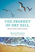 The Prophet of Dry Hill