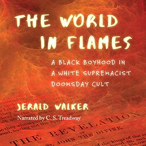Jerald Walker - The World in Flames audiobook